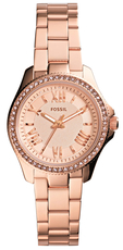 FOSSIL AM4578
